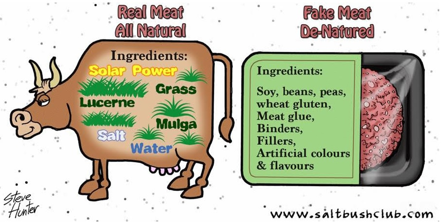 real-meat-vs-fake-meat
